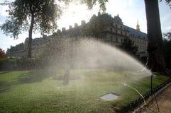 Bevattna lawnen fotografering för bildbyråer