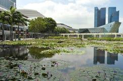 Bevattna lilly trädgården på Marina Bay, Singapore arkivbild