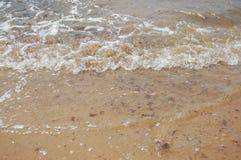 Bevattna och sand Royaltyfria Bilder