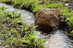 Bevattna och stena Fotografering för Bildbyråer
