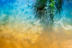 Bevattna reflexionen av himmel, lantliga västra Bengal, Indien Arkivfoto