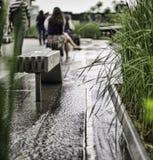Water kylde Fotografering för Bildbyråer