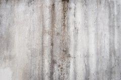 Bevattna skada orsaka formtillväxt på innerväggarna av en egenskap royaltyfri fotografi