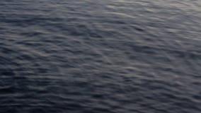 Bevattna sorlet på yttersidan av en mörk sjö lager videofilmer