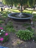 Bevattna springbrunnen royaltyfri foto