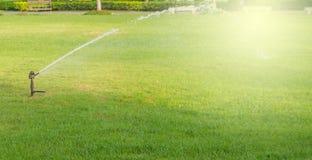 Bevattna sprinkleren Royaltyfria Bilder