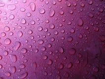 Bevattna tappar Fotografering för Bildbyråer