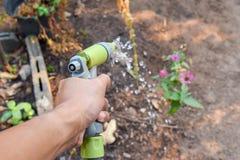 bevattna växterna med sprutpistolen Arkivfoto