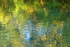 Bevattna yttersida med reflexion av lövverk av träd Royaltyfri Fotografi