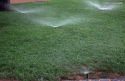 Bevattning av gräsmattor Fotografering för Bildbyråer