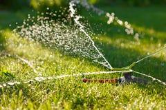 Bevattning av grönt gräs Royaltyfri Foto