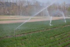 Bevattningväxtsystem på ett fält, ett jordbruk och växter arkivfoto