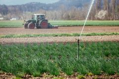 Bevattningväxtsystem på ett fält, jordbruk Traktor i den oskarpa bakgrunden royaltyfri fotografi