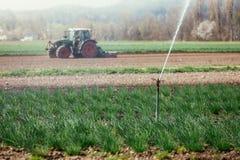 Bevattningväxtsystem på ett fält, jordbruk Traktor i den oskarpa bakgrunden arkivbild