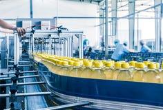 Beve l'impianto di produzione Immagine Stock Libera da Diritti
