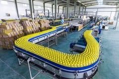 Beve l'impianto di produzione in Cina Immagine Stock