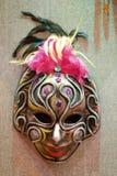 Bevederd masker royalty-vrije stock afbeelding