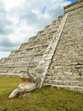 Bevederd serpent in piramide Kukulkan Chichen Itza Royalty-vrije Stock Foto's