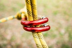 Beveilig het vastmaken van de kabel aan het beklimmen carabiner, carabiner in nadruk stock afbeeldingen