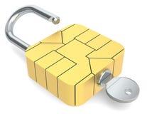 Beveilig online betaling. Royalty-vrije Stock Afbeeldingen