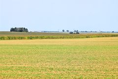 Beveled haystack, summer, straw wrapped on the field royalty free stock images