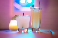 Bevendo alle luci al neon fotografia stock libera da diritti