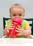 Bevendo dalla tazza Immagine Stock Libera da Diritti