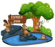 Bever bij de dierentuin royalty-vrije illustratie