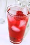 bevera czerwono odświeżenie koktajlowym. Obrazy Royalty Free