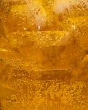 Beverage beer. Drink beer in a jug Royalty Free Stock Photography