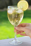 Beverage with lemon in wine glass Royalty Free Stock Photography