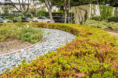 Beverly Gardens Park Nicely klippte buskar, blommor och stenar framme av huset, främre gård för illustrationliggande för design h Arkivfoton