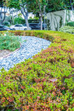 Beverly Gardens Park Nicely trimmed bushes, flowers and stones in front of the house, front yard. Landscape design Royalty Free Stock Photos