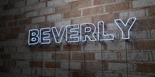BEVERLY - Glödande neontecken på stenhuggeriarbeteväggen - 3D framförde den fria materielillustrationen för royalty vektor illustrationer