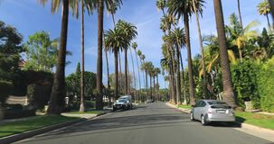 Beverly Hills street with palm trees. Beverly Hills, CA, USA - January 10, 2018: Driving down a Beverly Hills street with palm trees stock footage