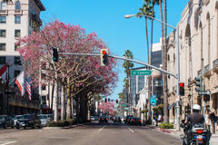 BEVERLY HILLS, CA, USA - OCTOBER 4th, 2016: View to the Wilshire Blvrd in Beverly Hills Los Angeles. Autumn on California streets. Cars on the Wilshire Blvrd Royalty Free Stock Images