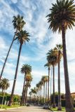 Beverly Hills, Los Angeles, Califórnia, EUA fotografia de stock
