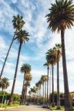 Beverly Hills, Los Angeles, la Californie, Etats-Unis photographie stock