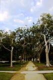 Beverly Hills park Arkivbild