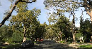 Beverly Hills street with old trees. Beverly Hills, CA, USA - January 10, 2018: Driving down a Beverly Hills street with old trees stock video