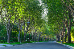 Beverly Hills Street Stock Photos