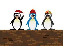 Bevindende pinguïn op de muur Royalty-vrije Stock Fotografie
