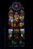 Bevlekt venster, Votive kerk, Wenen, Oostenrijk Stock Afbeelding