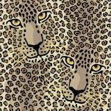 Bevlekte Katten stock illustratie