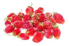 Bevroren aardbeien op witte achtergrond Royalty-vrije Stock Afbeeldingen