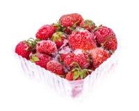 Bevroren aardbeien op witte achtergrond Royalty-vrije Stock Foto's
