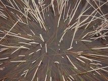 Bevroren abstracte texturen in ijs - oude foto Royalty-vrije Stock Foto's