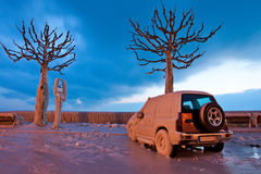 Bevroren Auto Stock Fotografie