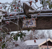 Bevroren bessen en aantalteken Stock Foto's