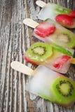 Bevroren bessen op een stok Stock Fotografie